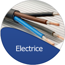 Electrice